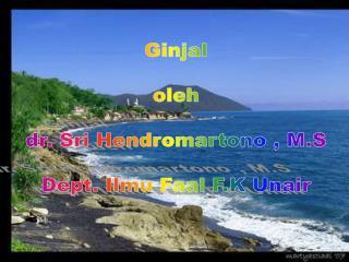 Ginjal oleh dr. Sri Hendromartono , M.S Dept. Ilmu Faal F.K Unair