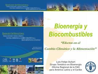 Luis Felipe Duhart Grupo Temático en Bioenergía Oficina Regional de la FAO