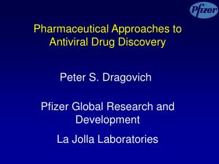 Pharmaceutical Approaches to Antiviral Drug Discovery