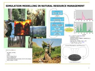 SIMULATION MODELLING IN NATURAL RESOURCE MANAGEMENT
