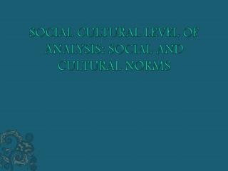 SOCIAL CULTURAL LEVEL OF ANALYSIS: SOCIAL AND CULTURAL NORMS
