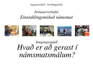 Ingunnarskóli - Norðlingaskóli Þróunarverkefni Einstaklingsmiðað námsmat