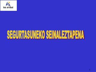 SEGURTASUNEKO SEINALEZTAPENA
