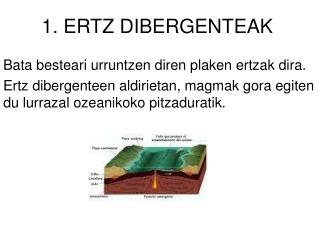 1. ERTZ DIBERGENTEAK