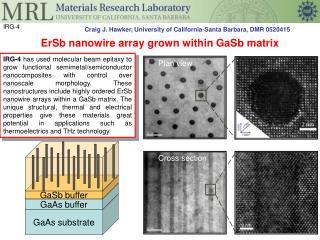 ErSb nanowire  array grown within  GaSb  matrix