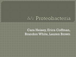 ? / ? Proteobacteria