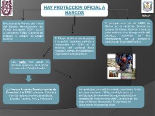 HAY PROTECCION OFICIAL A NARCOS