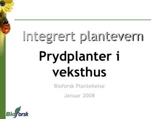 Integrert plantevern