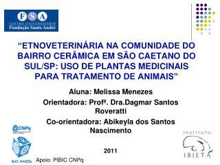 Aluna: Melissa Menezes Orientadora: Profª. Dra.Dagmar Santos Roveratti
