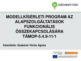 MODELLKÍSÉRLETI PROGRAM AZ ALAPSZOLGÁLTATÁSOK FUNKCIONÁLIS ÖSSZEKAPCSOLÁSÁRA TÁMOP-5.4.9-11/1