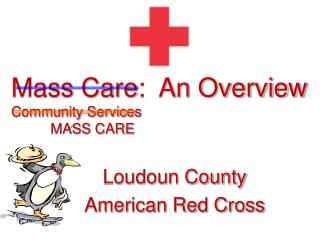 Mass Care:  An Overview Community Services           MASS CARE