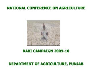 NATIONAL CONFERENCE ON AGRICULTURE           RABI CAMPAIGN 2009-10   DEPARTMENT OF AGRICULTURE, PUNJAB