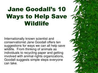 Jane Goodall s 10 Ways to Help Save Wildlife