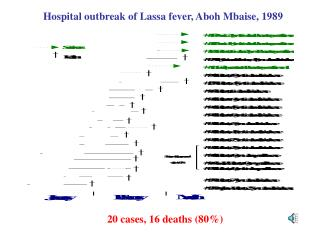 Hospital outbreak of Lassa fever, Aboh Mbaise, 1989