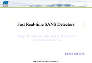 Fast Real-time SANS Detectors