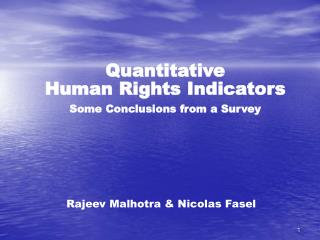 Quantitative Human Rights Indicators Some Conclusions from a Survey