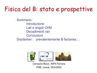 Fisica del B :  stato e prospettive