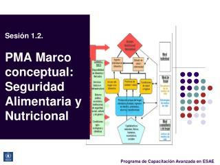 Sesión  1.2. PMA Marco conceptual:   Seguridad Alimentaria  y  Nutricional
