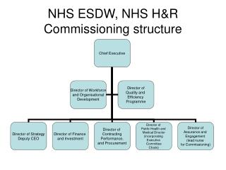 NHS ESDW, NHS H&R Commissioning structure