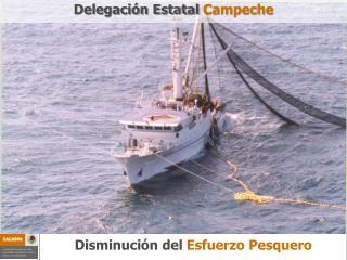 Disminución del Esfuerzo Pesquero
