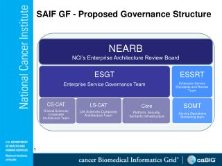 SAIF GF - Proposed Governance Structure