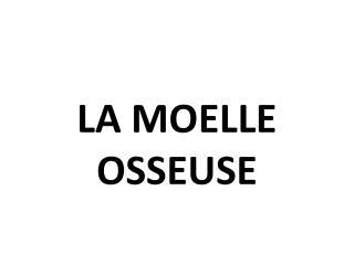 LA MOELLE OSSEUSE