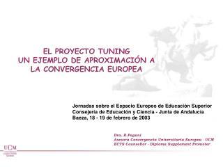 EL PROYECTO TUNING UN EJEMPLO DE APROXIMACI�N A LA CONVERGENCIA EUROPEA