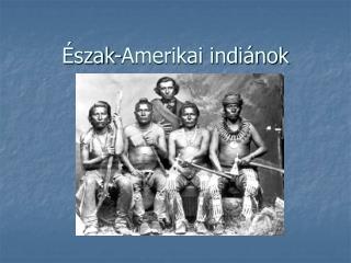 Észak-Amerikai indiánok