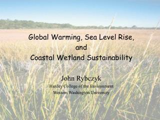 Global Warming, Sea Level Rise,  and  Coastal Wetland Sustainability John Rybczyk