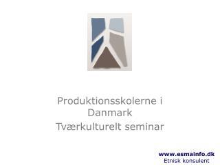 Produktionsskolerne i Danmark Tv�rkulturelt seminar