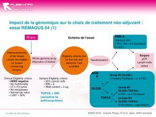 Impact de la génomique sur le choix de traitement  néo-adjuvant  : essai REMAGUS 04  (1)