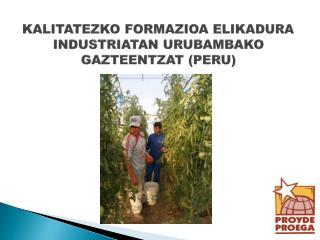 KALITATEZKO FORMAZIOA ELIKADURA INDUSTRIATAN URUBAMBAKO  GAZTEENTZAT (PERU)