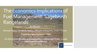 The Economics Implications of Fuel Management: Sagebrush Rangelands