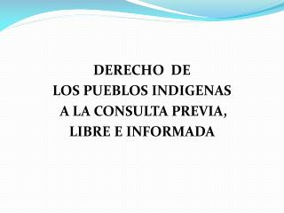 DERECHO  DE   LOS PUEBLOS INDIGENAS  A LA CONSULTA PREVIA,  LIBRE E INFORMADA