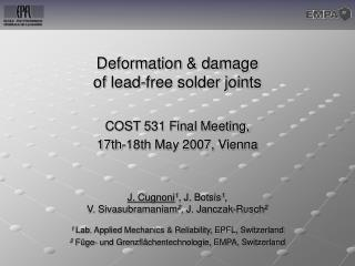 Deformation & damage  of lead-free solder joints