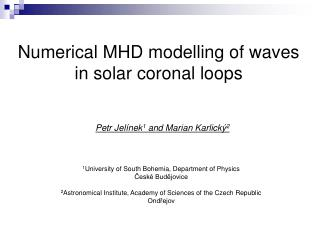 Numerical MHD modelling of waves in solar coronal loops