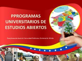 PPROGRAMAS UNIVERSITARIOS DE  ESTUDIOS ABIERTOS