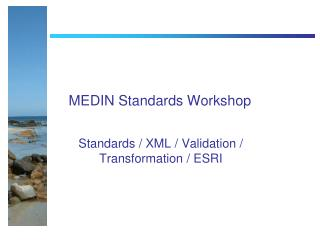 MEDIN Standards Workshop