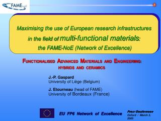 Maximising the use of European research infrastructures