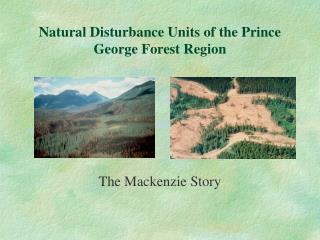 Natural Disturbance Units of the Prince George Forest Region