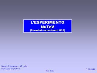 L'ESPERIMENTO  NuTeV (Fermilab experiment 815)