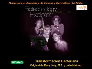 Transformaci ó n Bacteriana Original de Essy Levy, M.S. y Julie Mathern
