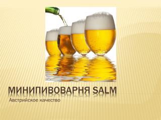 Минипивоварня SALM