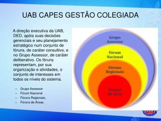 UAB CAPES GESTÃO COLEGIADA