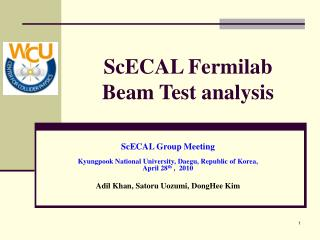 ScECAL Fermilab Beam Test analysis