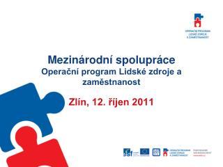 Mezinárodní spolupráce Operační program Lidské zdroje a zaměstnanost