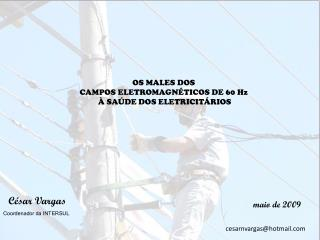 OS MALES DOS  CAMPOS ELETROMAGNÉTICOS DE 60 Hz  À SAÚDE DOS ELETRICITÁRIOS