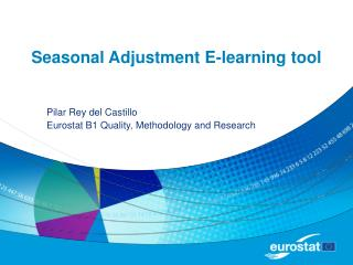 Seasonal Adjustment E-learning tool
