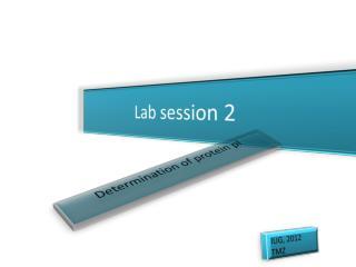 Lab session 2