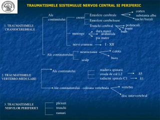 TRAUMATISMELE SISTEMULUI NERVOS CENTRAL SI PERIFERIC